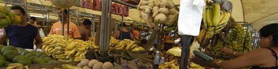 Banca de frutas no mercado Ver-o-Peso, Belém - Volta ao Mundo
