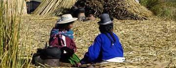 Cenas da Vida do Lago Titicaca (VM #54)