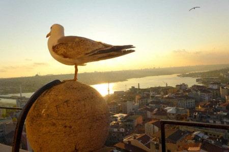 Torre Galata Istambul