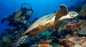 Instructor de buceo en las Maldivas