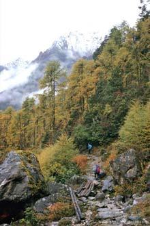Trekking no Kangchengjunga, Nepal