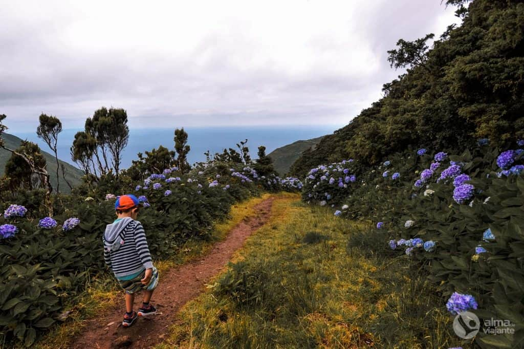 Trekking em São Jorge com crianças: PR1SJO