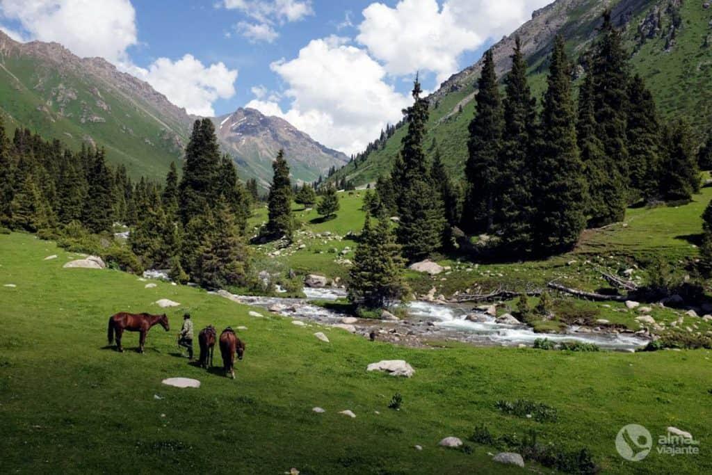 Trekking nas montanhas Tien Shan: vale Kyzylsul
