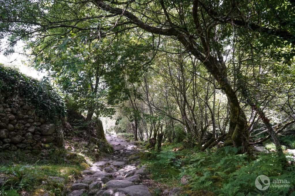 Caminho de pedra em sistelo