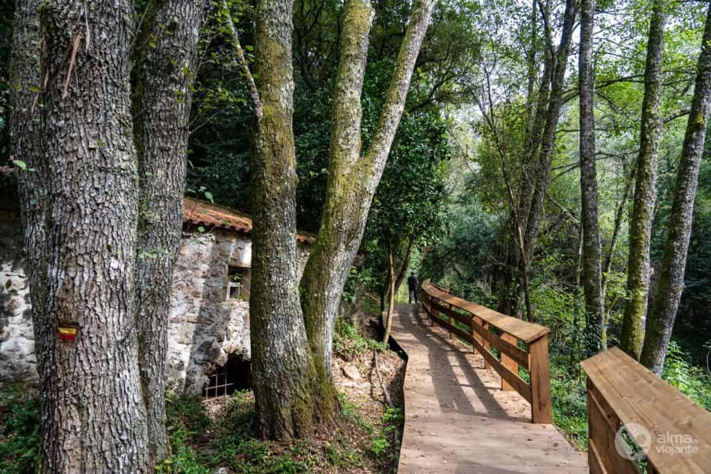Passadiço de madeira junto à ribeira de Alge