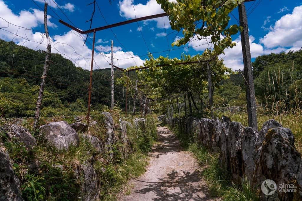 Caminhadas em Sistelo: Trilho dos Passadiços