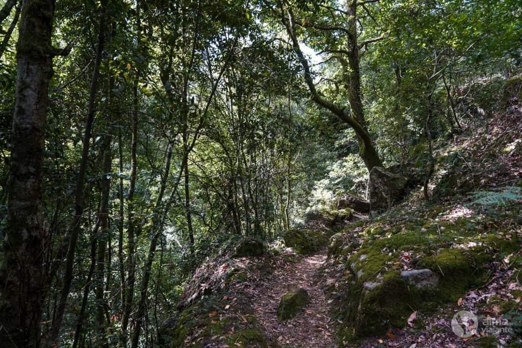 Percursos Marginais do Rio Minho, Melgaço