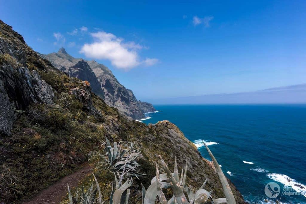 Trekking Anaga: PR-TF 8 Afur - Taganana - Afur