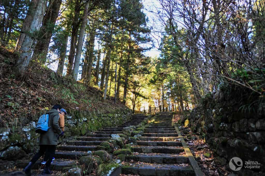 O que visitar em Nikko: caminho para o Santuário Toshogu