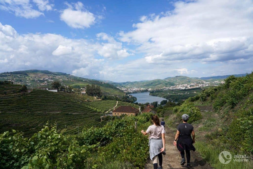 Trilho do Vinho do Porto, Lamego