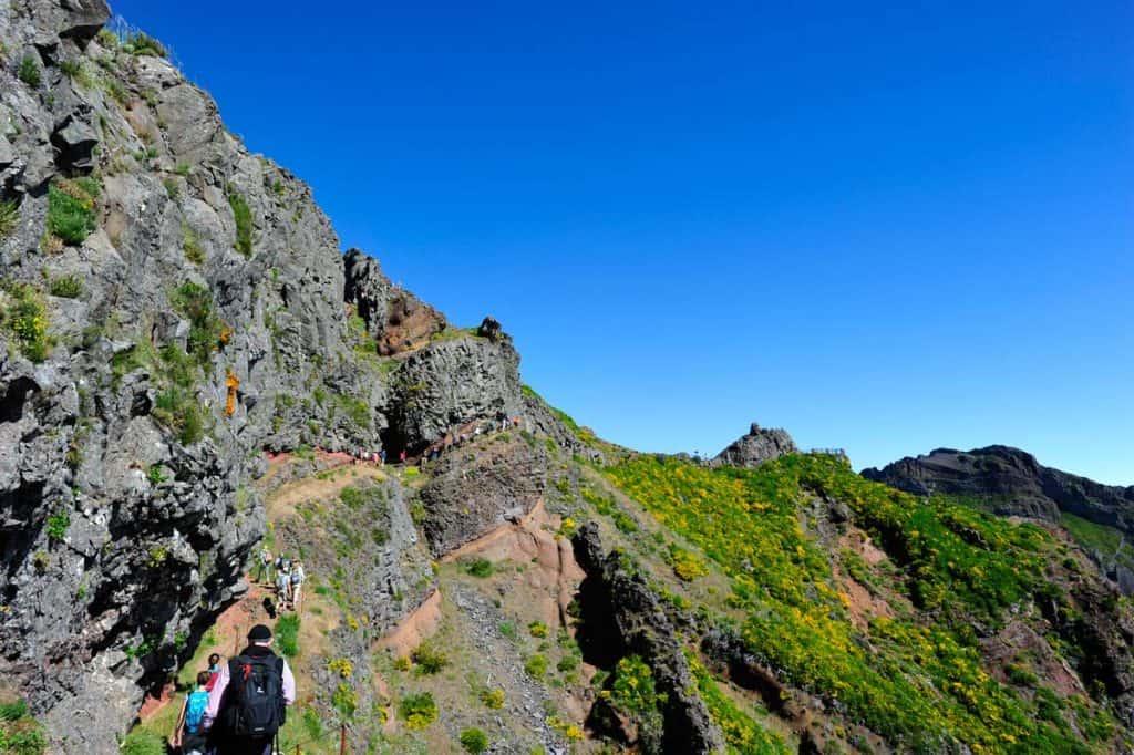 Trekking na Vereda do Arieiro