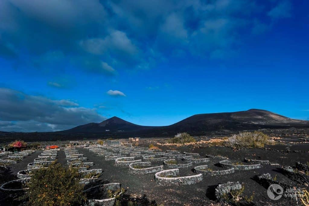 Scenarijus Lanzarotėje: La Geria