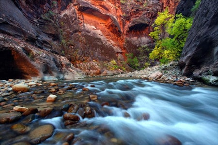 Virgin narrows, Zion, Utah