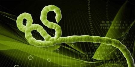 Consulta do viajante: vírus Ébola