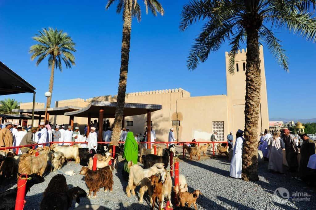 Mulheres no mercado de cabras de Nizwa