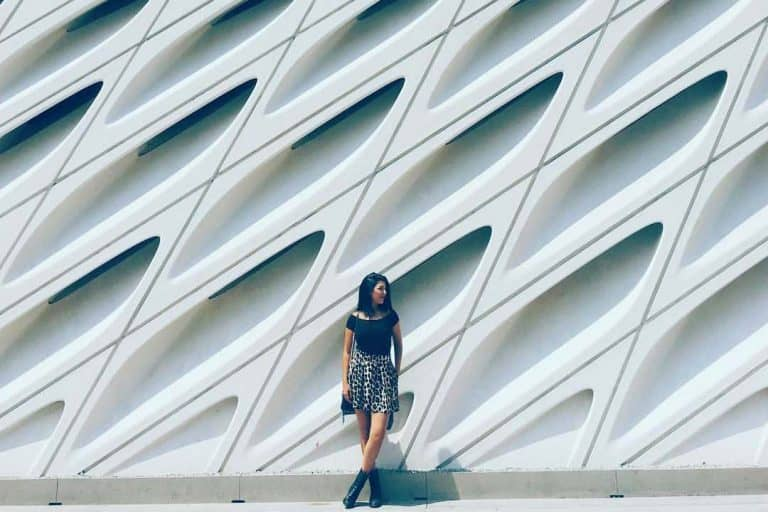 Viver em Los Angeles: The Broad Museum
